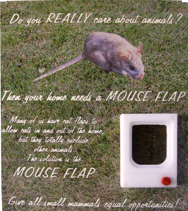 06big-mouse-flap-packet.jpg